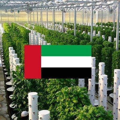 المزارع البرجية Tower Farms في دبي-الإمارات العربية المتحدة