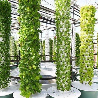 Was ist der Unterschied zwischen einem normalen aeroponischen Tower Garden und dem Microgreen (Baby Greens) Tower Garden?